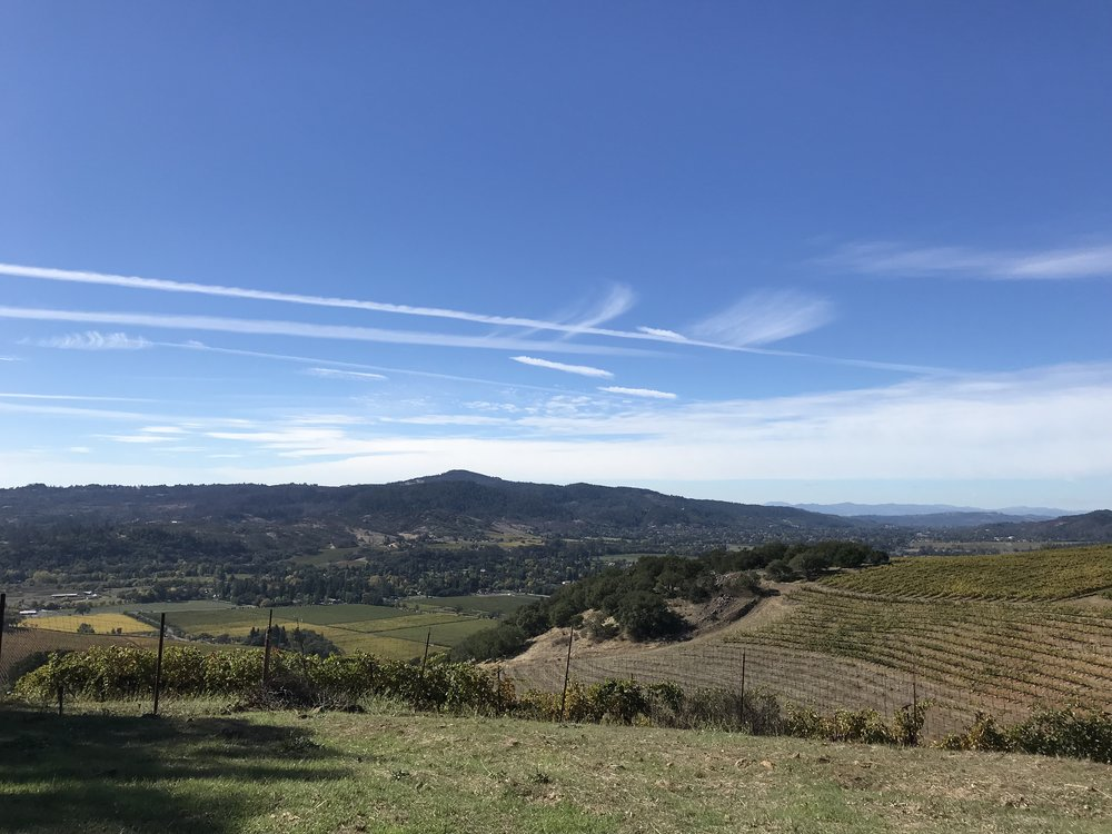 From atop Kunde winery