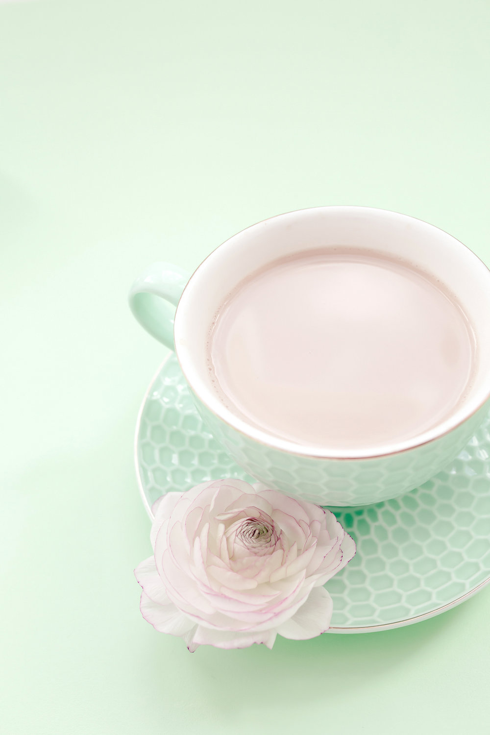 haute-stock-photography-pink-mint-backgrounds-final-12.jpg