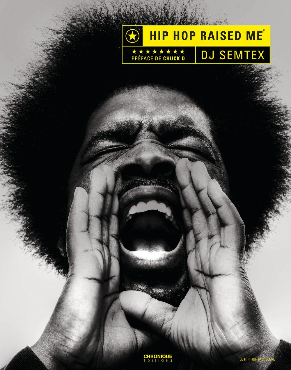 hip hop book cover 2.jpg