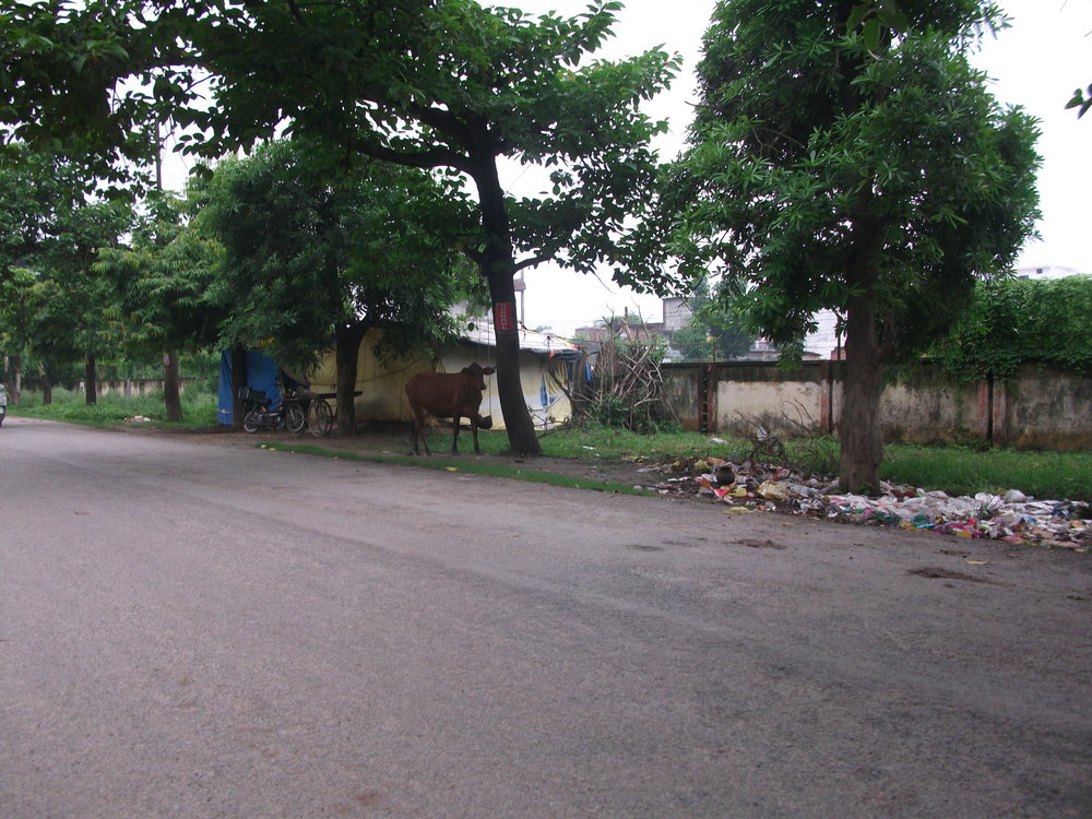 Gorakpur