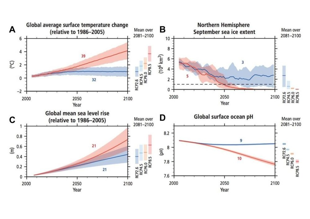 "Figure 7: Graphs from the IPCC study (described above). ""Mean over 2081-2100"" shows the range of potential overlap for the four scenarios (Pachauri & Meyer, 2014)."