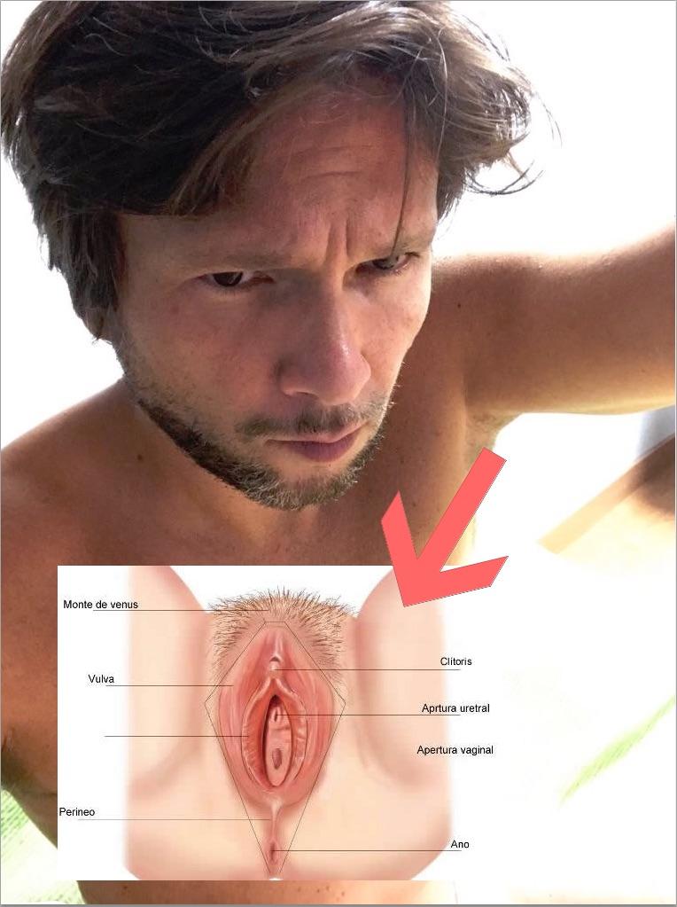 vaginas en los brazos.jpg
