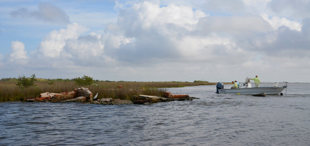 The Human Coast   , a humanities-based collaborative aimed at ensuring that the students and faculty of LSU are leaders in the long process of restoring and protecting the peoples, lands, and waters of coastal Louisiana.