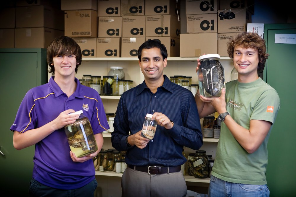 Dr. Prosanta Chakrabarty, Curator of Fishes at the LSU Museum of Natural Science, holding up some recently collected specimens with his undergraduates Justin Kutz (left) and Parker House (right).