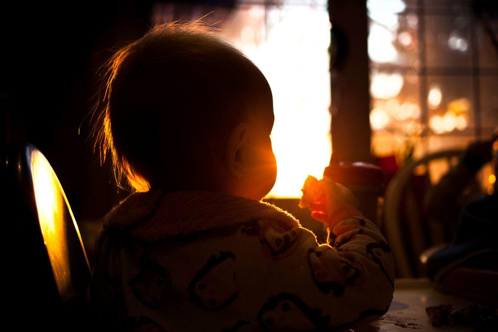 morning-light-toddler-girl-breakfast-hamilton-lifestyle-photographer.jpg