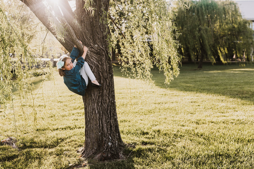 Same thing here. Kids love to climb trees and this made for a cute image.