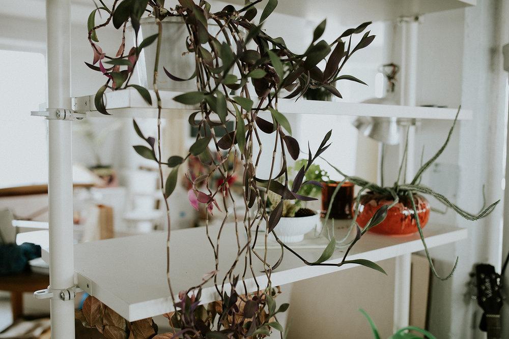 rosemarine-textiles-studio-plants