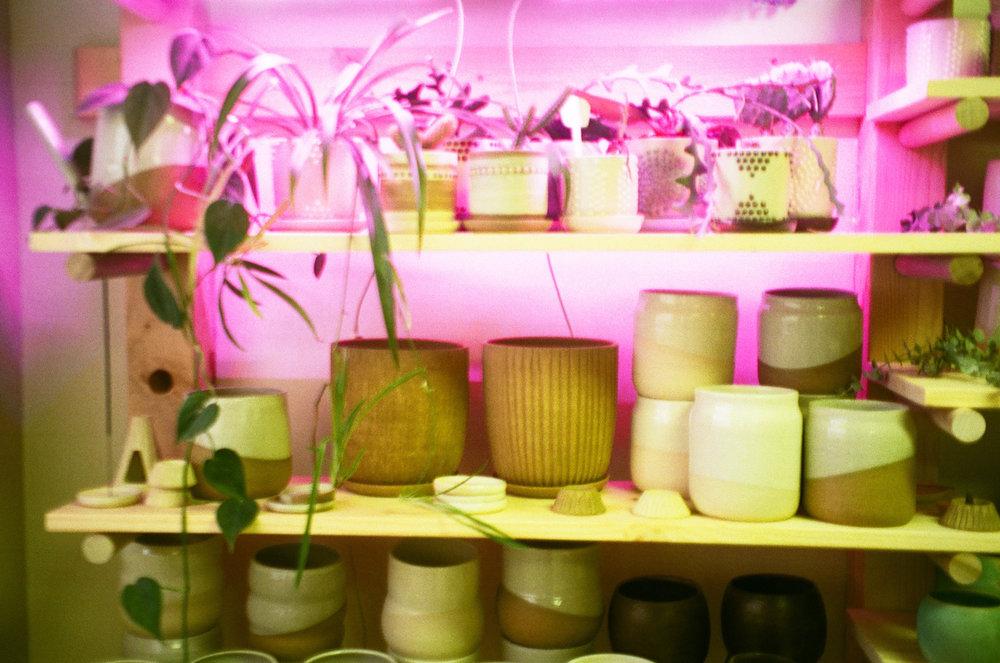 held-ceramics-shelves-1.jpg