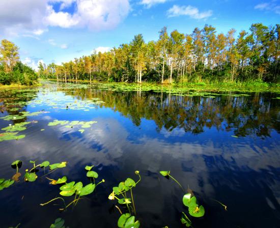 Canoe Blog 3.jpg