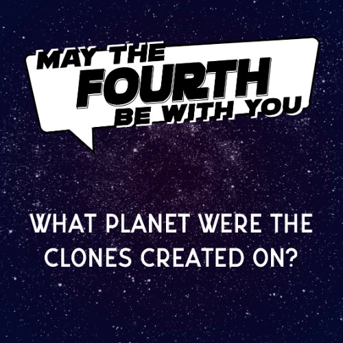 IG4802-Star Wars Trivia 3 May Fouth Digital Graphic.jpg