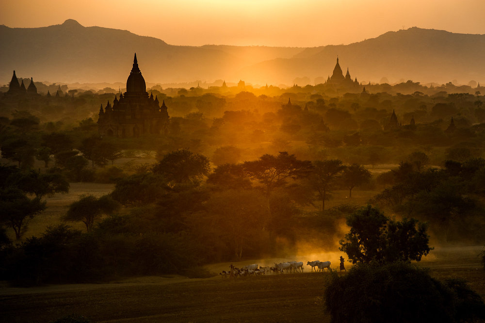 Pagodas in the evening light, signs of the country's rich history and culture. Bagan, Myanmar.