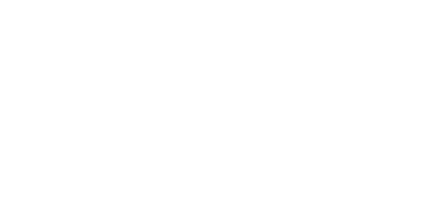 A frugal traveller