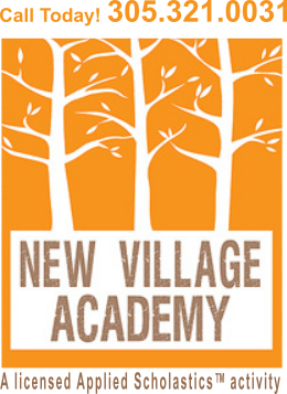 New Village Academy