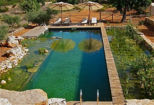 green-traveller-pool.jpg