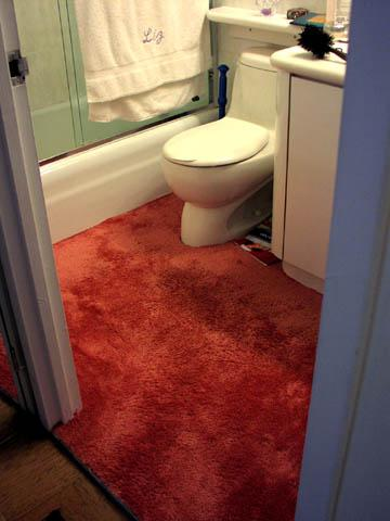 carpet-bathroom