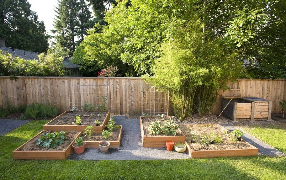 raised-planters-backyard.jpg