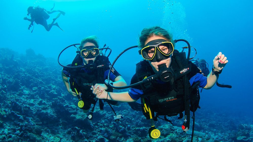 PADI Scuba Diving Courses Or Classes