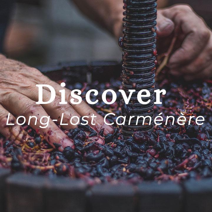 wine-carmenere.jpg
