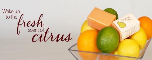 citrus-01.jpg