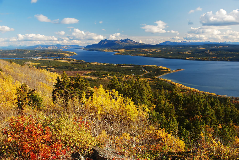 Teslin in Fall-Final.jpg