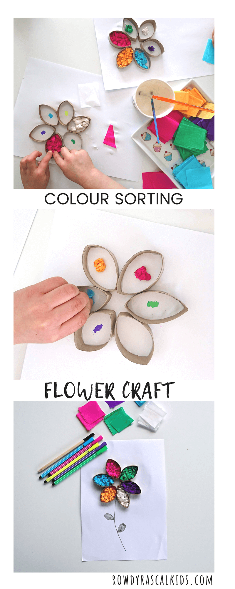 Sorting Colours Tissue Paper Flower Learning Craft Rowdy Rascals