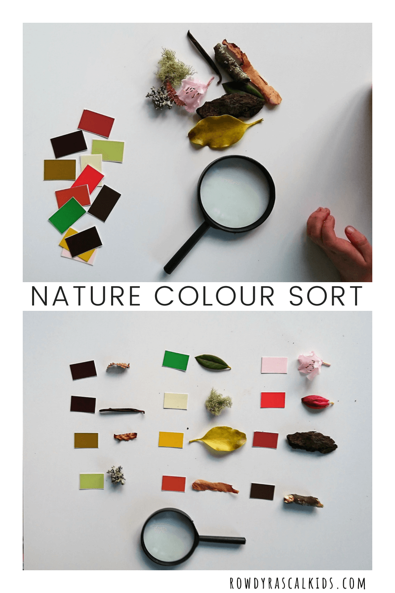 nature color sort