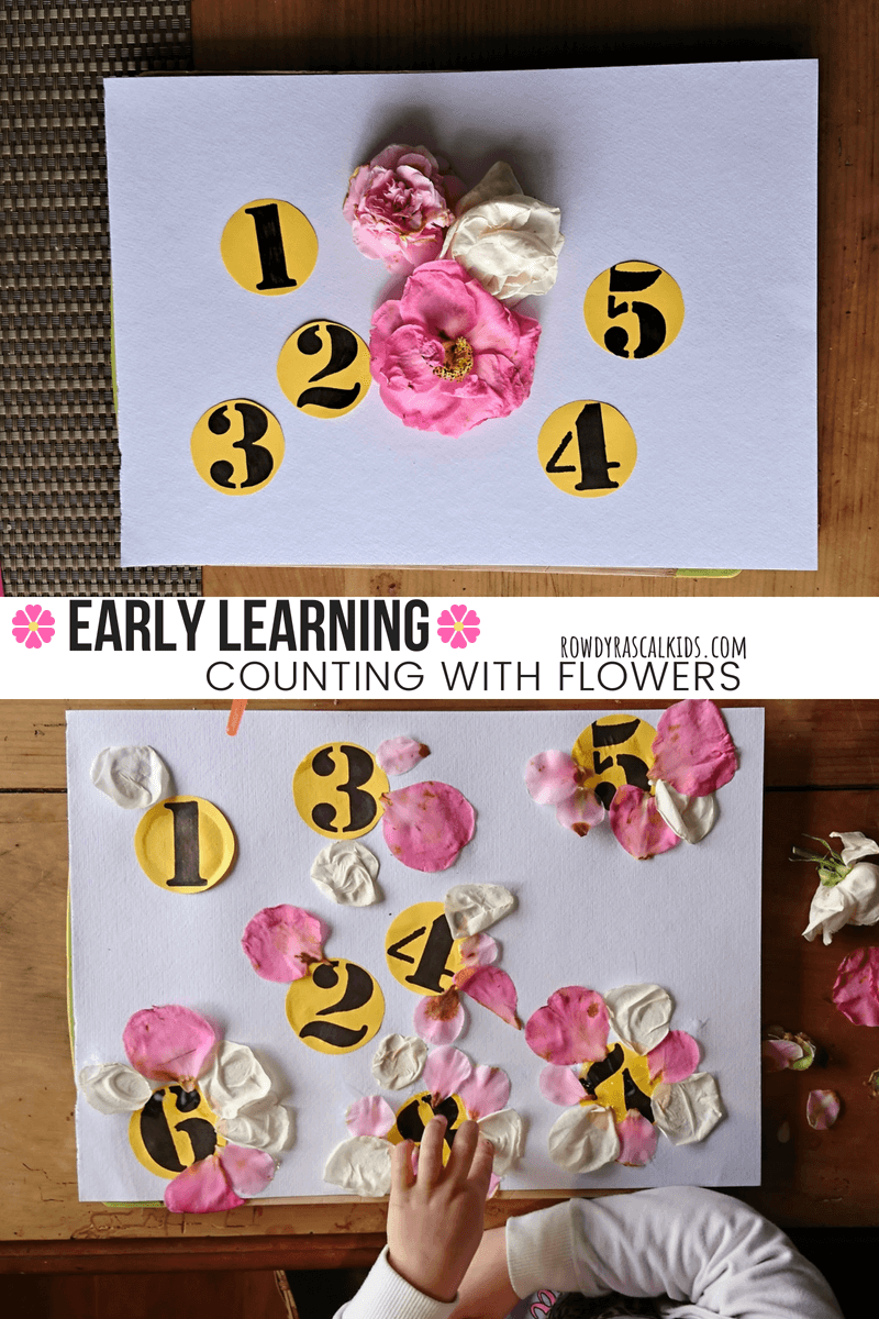 learning to count with flowers