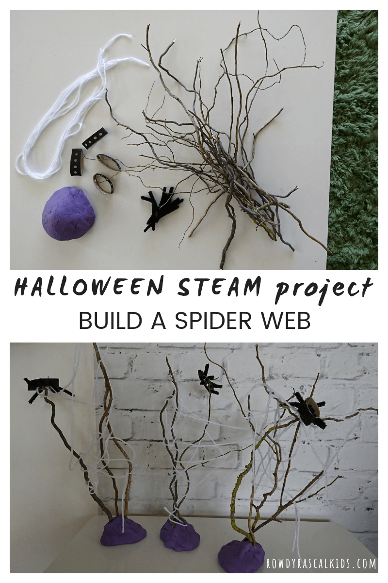 spider web steam challenge