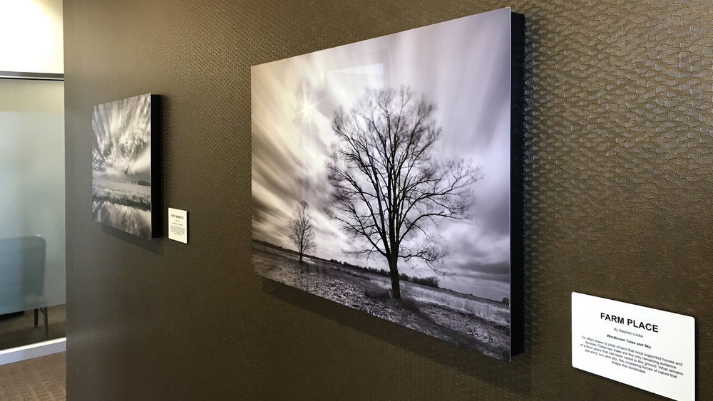 Farm Place in situ at KCB 20 x 30 on metal