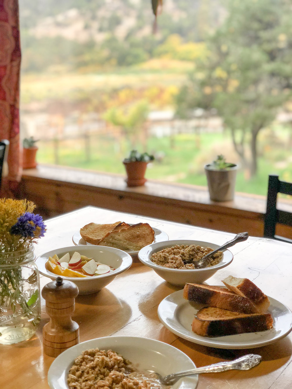 Vegan friendly breakfast with a view of the kitchens garden