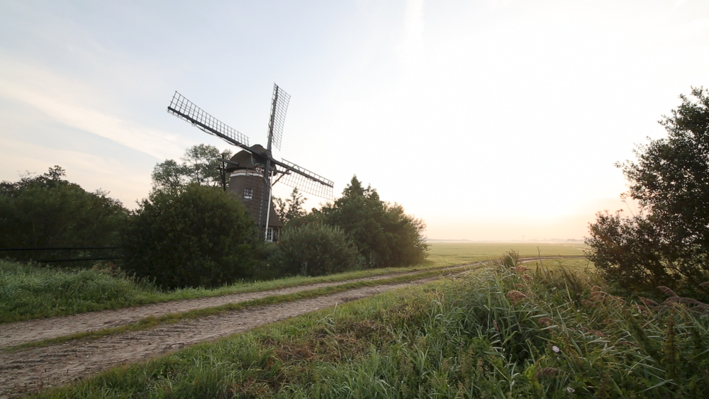 Friesland-windmill-and-dirt-road.png