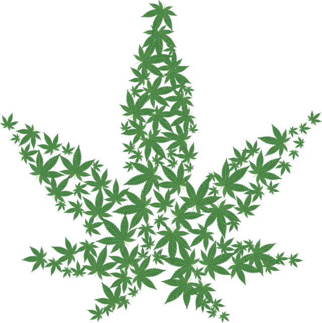cannabis-2125586_640.png