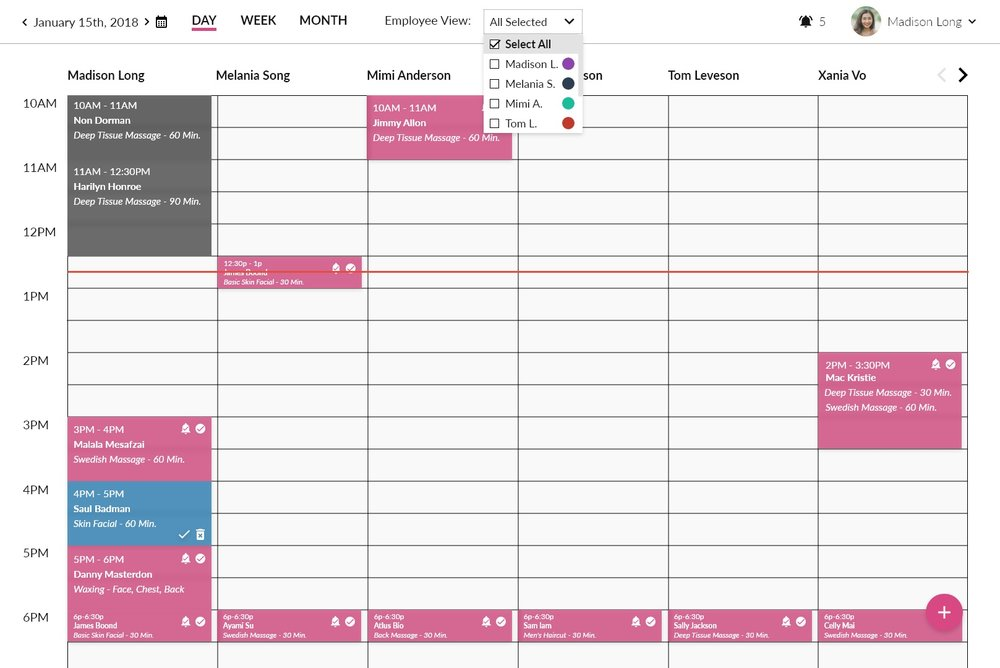 Day view  of appointments for multiple employees