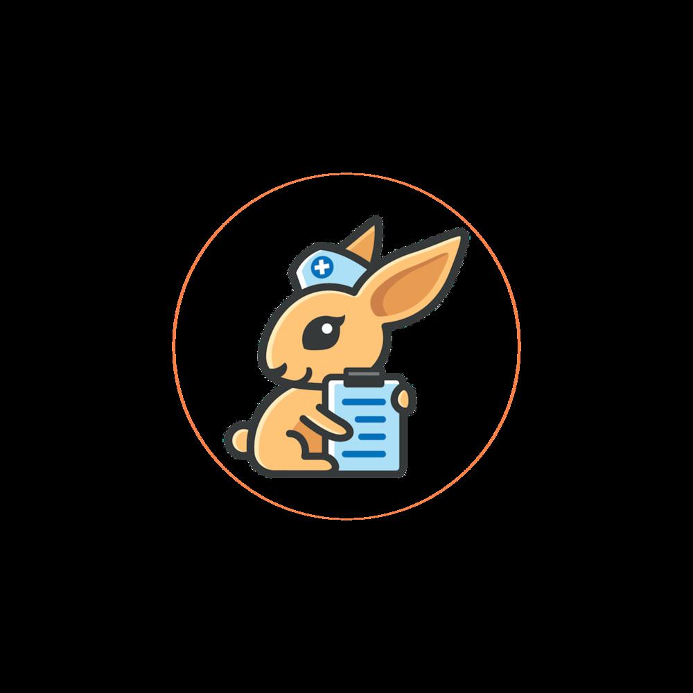 rabbitpink.png