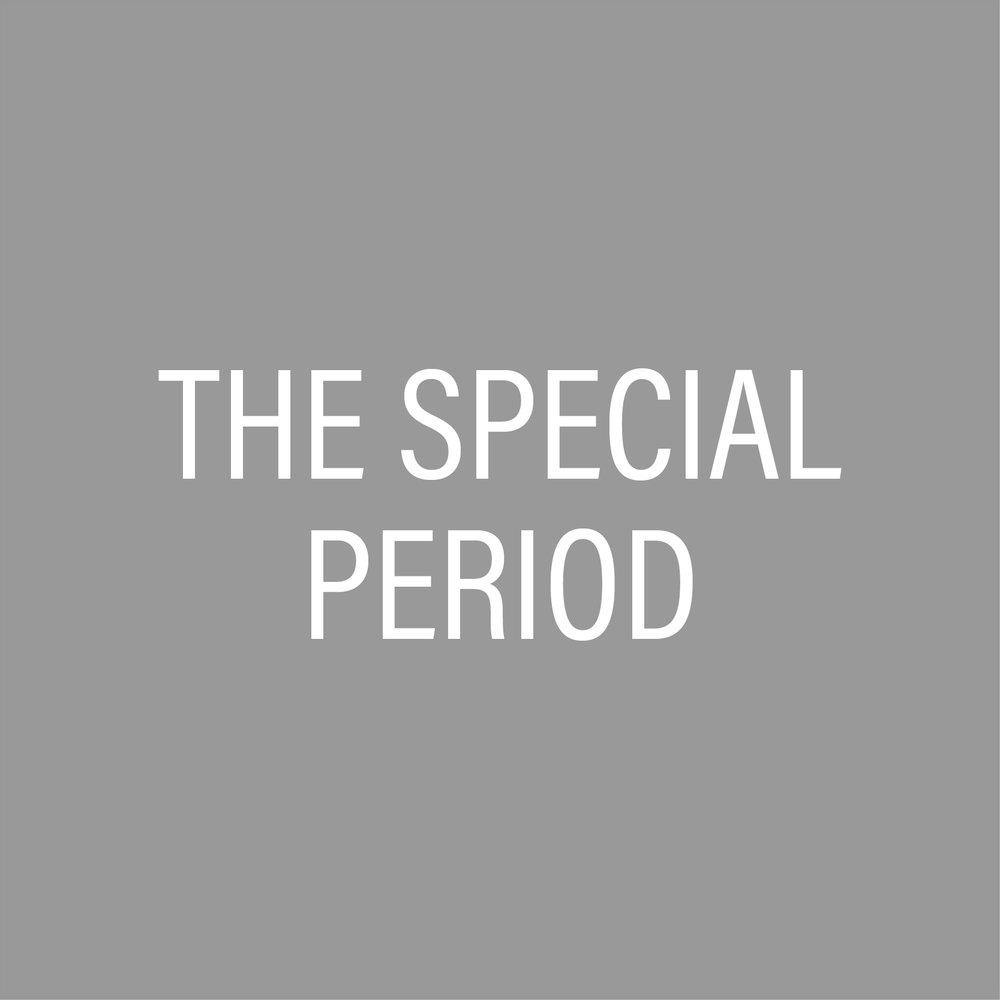 Special Period.jpg