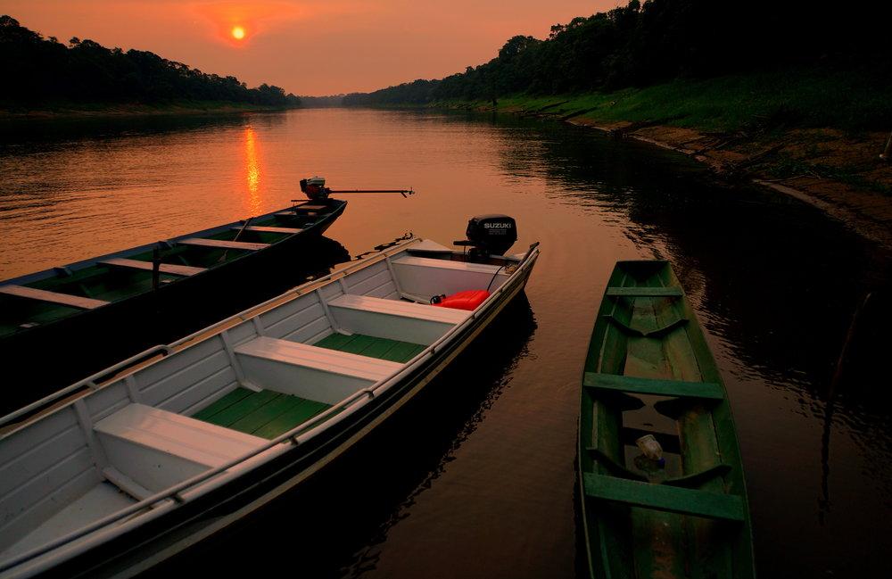 Twilight descends deep inside the Amazon rainforest, in Brazil.