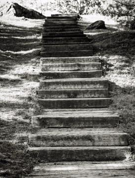 Steps Canada.jpg
