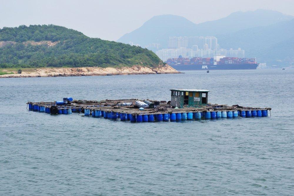 Aquaculture lamma island