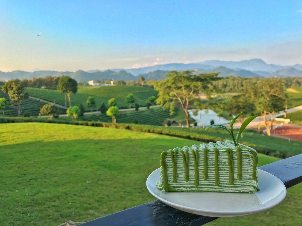 Choui Fong Tea Plantation Chiang Rai green tea crepe cake