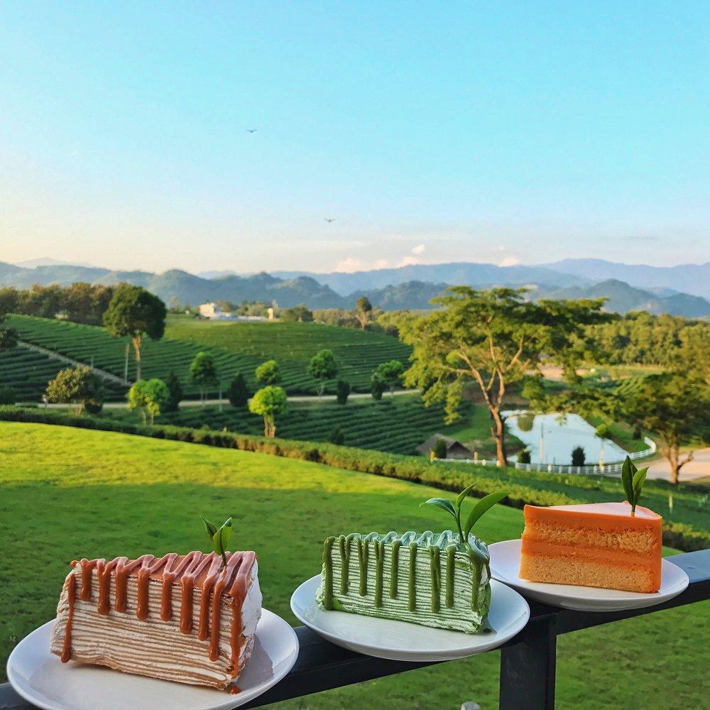 Choui Fong Tea Plantation Chiang Rai cafe cake