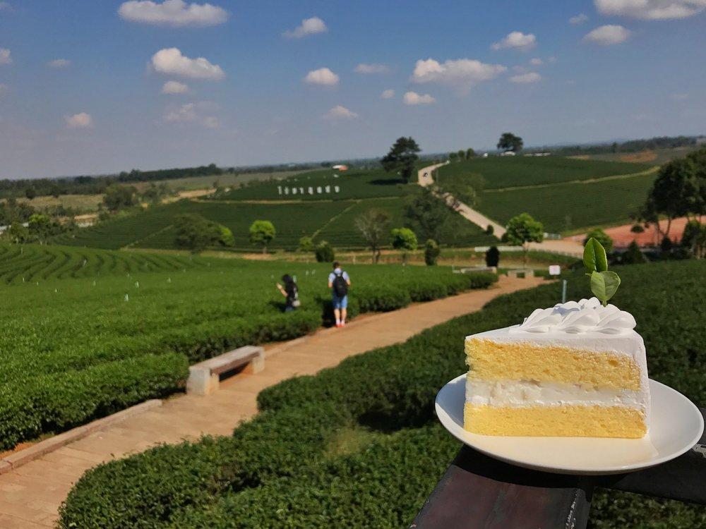 Choui Fong Tea Plantation Chiang Rai coconut cake