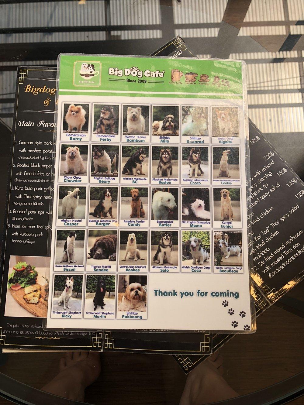 Big Dog Cafe Bangkok