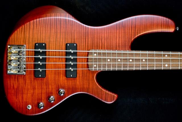 Torzal_Guitars_Bolt_on_Bass_Header_rev_1920.jpg