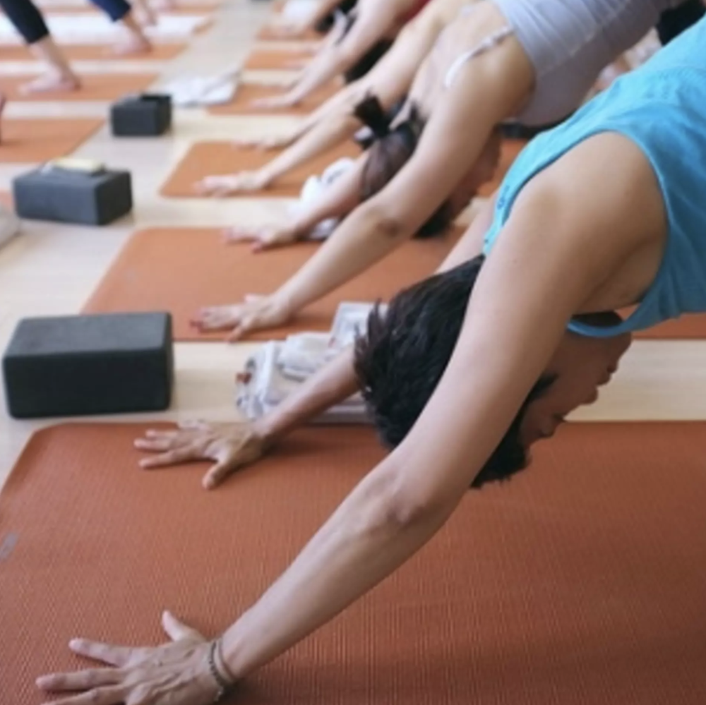 DYNAMIC VINYASA FLOW - Read more…