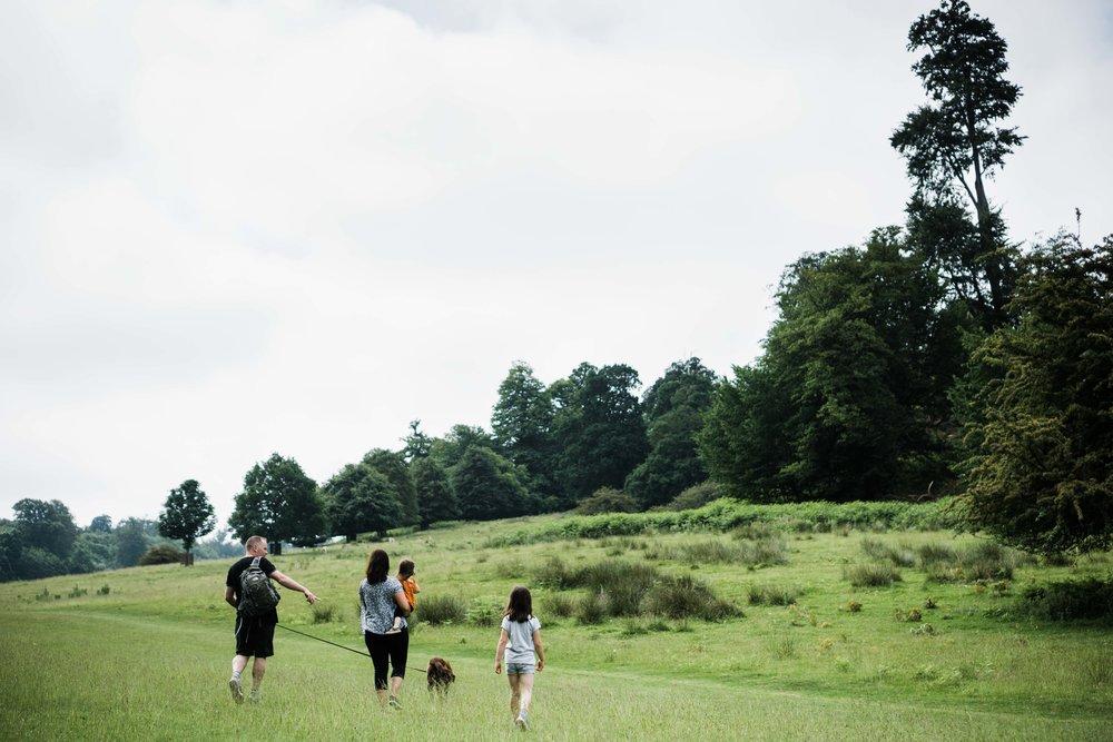 Walk at Knole