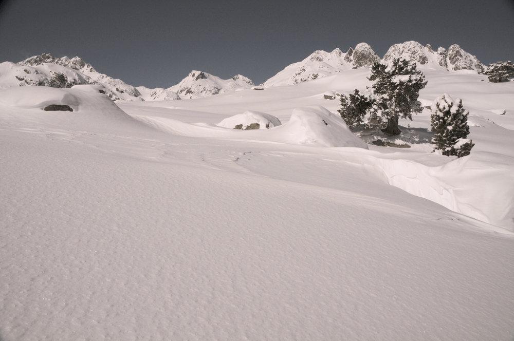 2010a 278.jpg