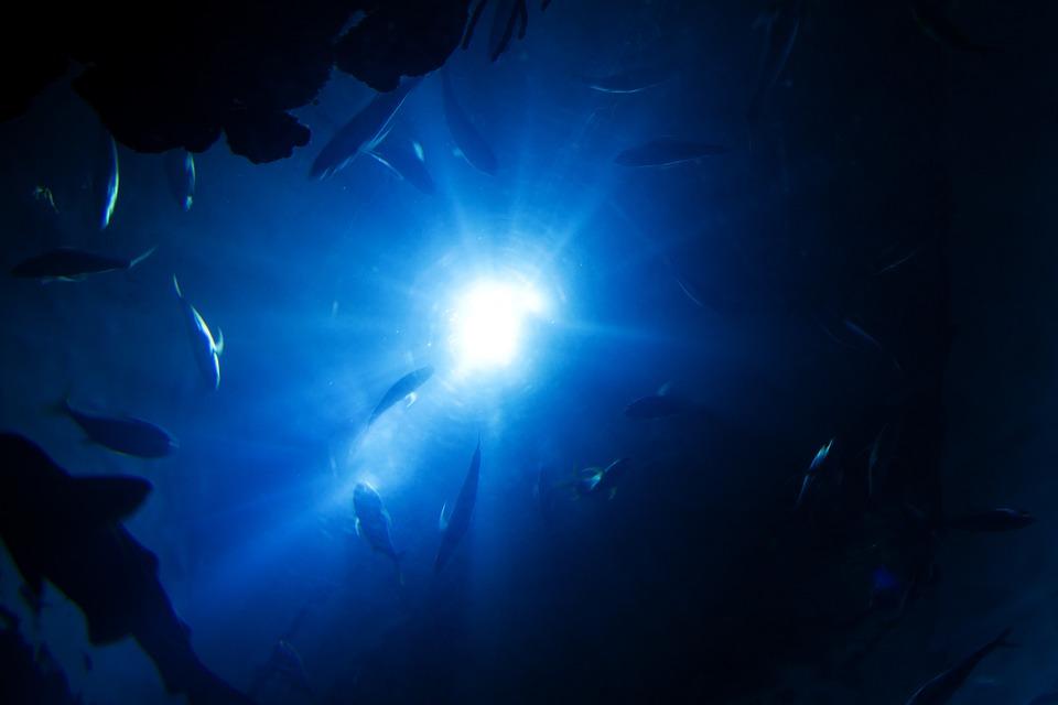 deep-sea-fishing-at-the-manta-resort.jpg