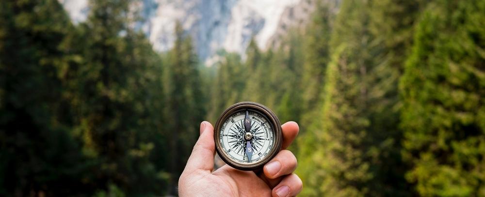 navigating change -