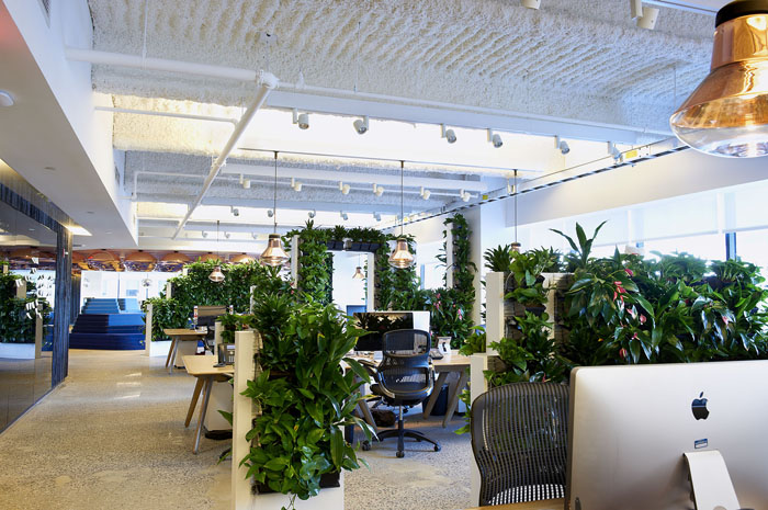 What is biophilic design? - Biophilic design is the incorporation of nature, or elements mimicking nature, into the design of spaces.A primary concern in urban areas, many spaces offer vast amounts of natural light however offer very little, or no elements of nature.