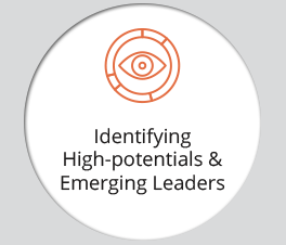 "The graphic displays an icon and the text ""Identifying High-potentials & Emerging Leaders."""